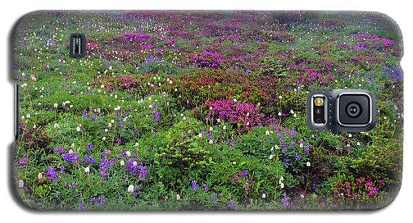 Dickerman Floral Meadow Galaxy S5 Case