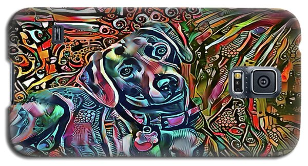 Did Somebody Say Treat? Blue Lacy Dog Galaxy S5 Case
