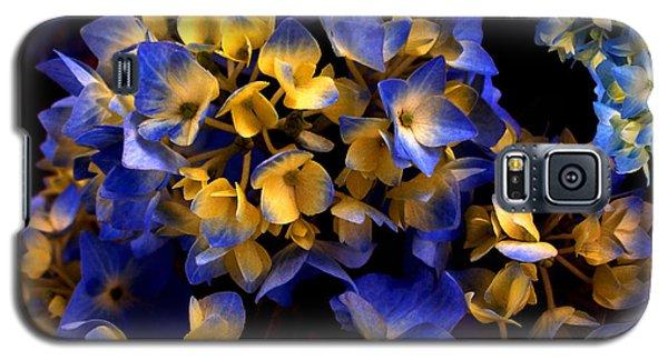 Galaxy S5 Case featuring the photograph Digital Hydrangea by Lynda Lehmann