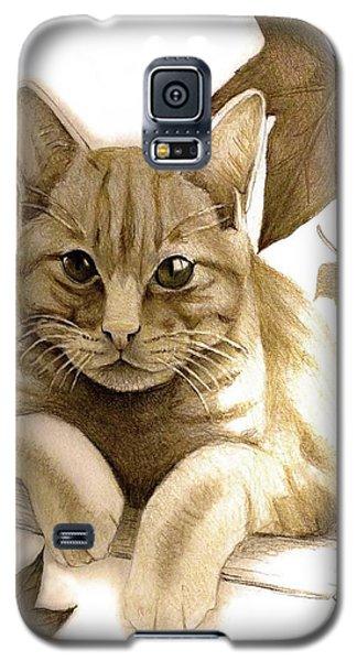 Digitally Enhanced Cat Image Galaxy S5 Case