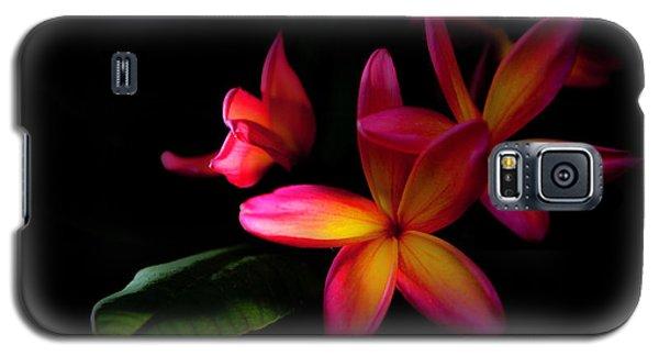 Digitized Sunset Plumerias  Galaxy S5 Case