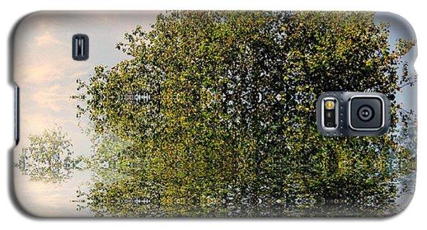 Dimensional Galaxy S5 Case