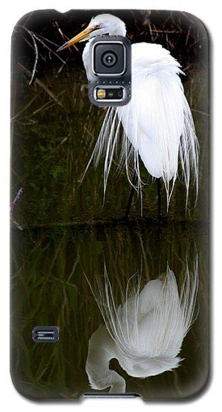 Dimensions Galaxy S5 Case