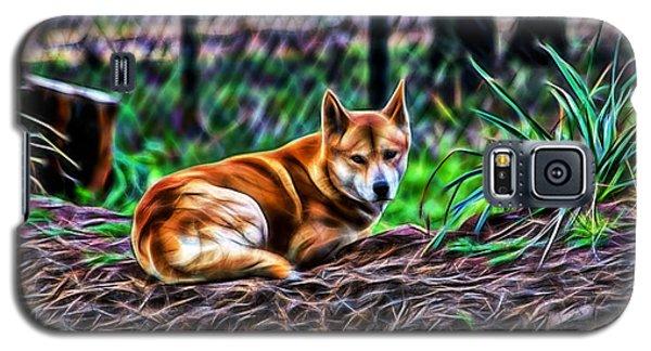 Dingo From Ozz Galaxy S5 Case