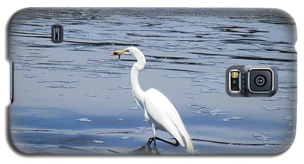 Dinnertime Pelican Galaxy S5 Case