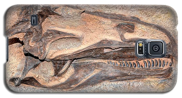 Galaxy S5 Case featuring the photograph Dinosaur Skull And Teeth In Rock - Utah by Gary Whitton