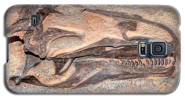 Dinosaur Skull And Teeth In Rock - Utah Galaxy S5 Case by Gary Whitton