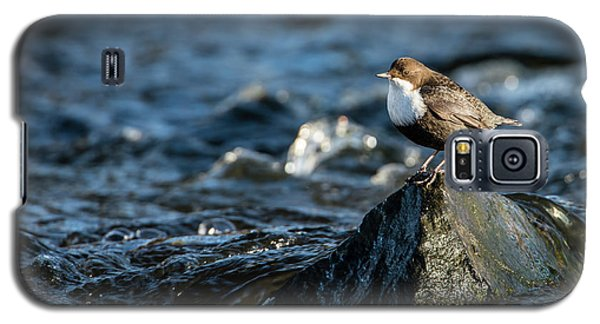 Dipper On The Rock Galaxy S5 Case by Torbjorn Swenelius