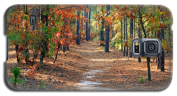 Autumn Scene Dirt Road Galaxy S5 Case