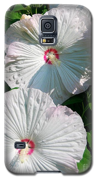 Galaxy S5 Case featuring the photograph Dish Flower by Brian Jones