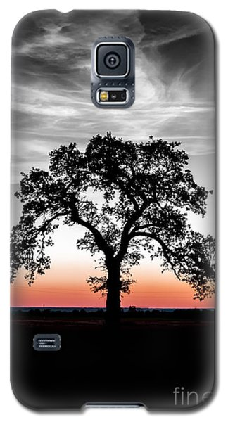 Galaxy S5 Case featuring the photograph Distinctly by Betty LaRue