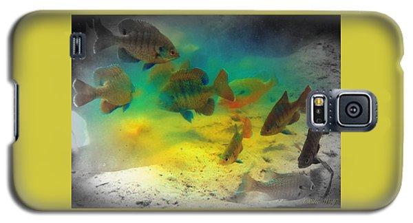 Dive Buddies Galaxy S5 Case