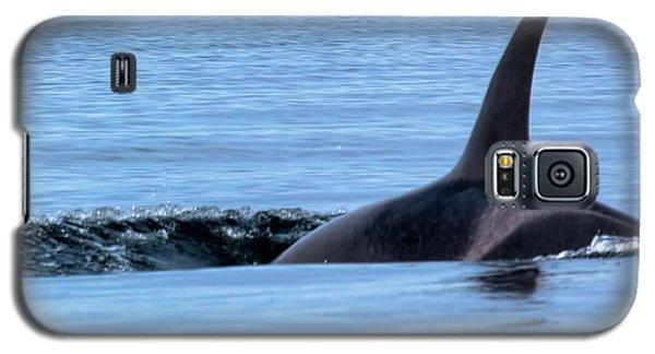 Dive Galaxy S5 Case
