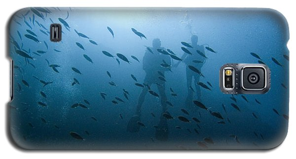 Diving With Fishes Galaxy S5 Case