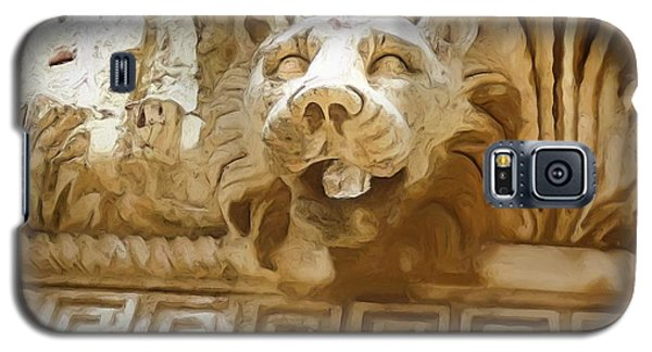 Do-00313 Lion Water Feature Galaxy S5 Case