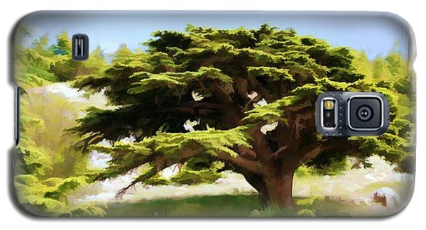 Galaxy S5 Case featuring the photograph Do-00319 Cedar Tree by Digital Oil
