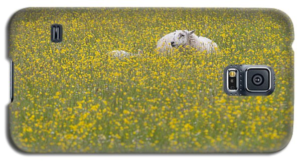 Do Ewe Like Buttercups? Galaxy S5 Case