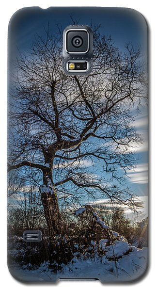 Galaxy S5 Case featuring the photograph Do You Believe In Ents? by Davorin Mance