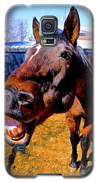 Do You Have A Treat For Me? Galaxy S5 Case