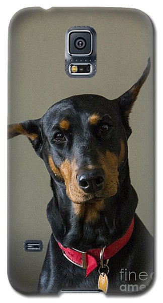Dobie Galaxy S5 Case