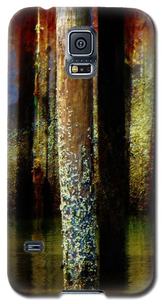 Dock At Low Tide Galaxy S5 Case