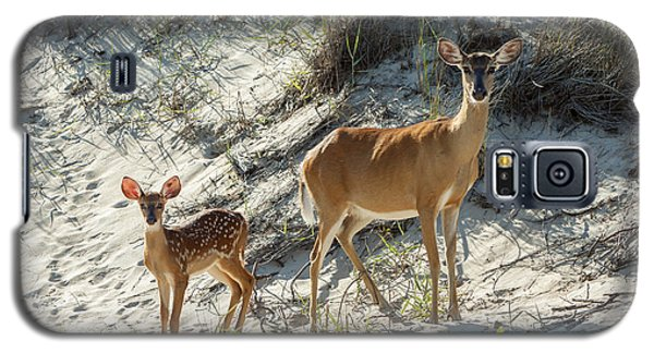 Doe And Fawn Galaxy S5 Case
