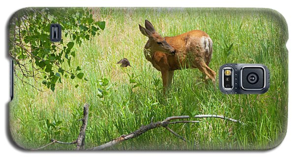 Doe Meets Bird 4 Galaxy S5 Case by Tom Potter