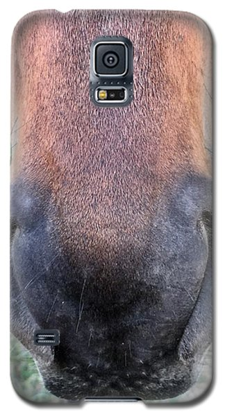 Big Nose  Galaxy S5 Case