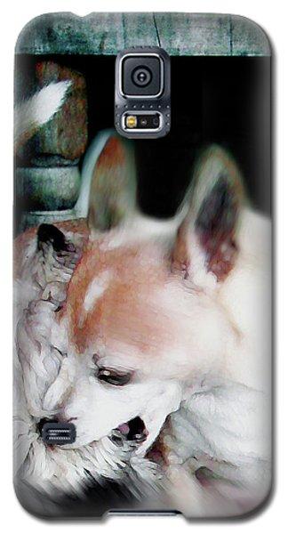 Dog Love Art 3 Galaxy S5 Case
