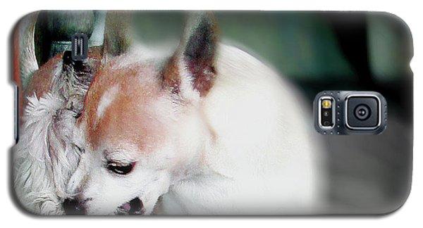 Dog Love Art 4 Galaxy S5 Case
