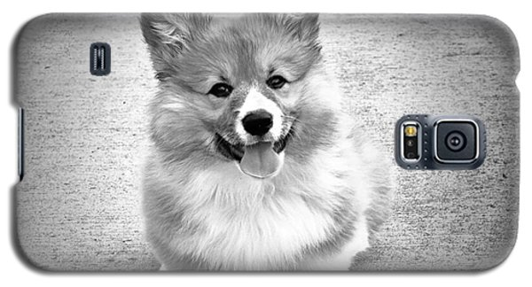 Puppy - Monochrome 6 Galaxy S5 Case