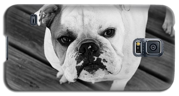 Dog - Monochrome 6 Galaxy S5 Case