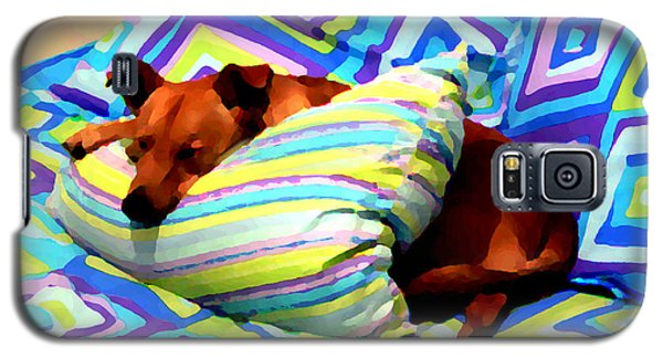 Dog Nap - Oil Effect Galaxy S5 Case