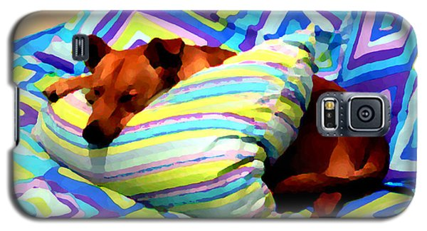 Dog Nap - Oil Effect Galaxy S5 Case