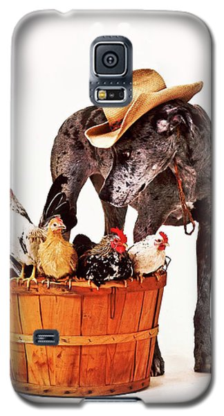 Galaxy S5 Case featuring the photograph Dog Sitter by Susan Stone