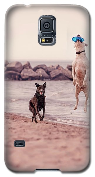 Dog With Frisbee Galaxy S5 Case