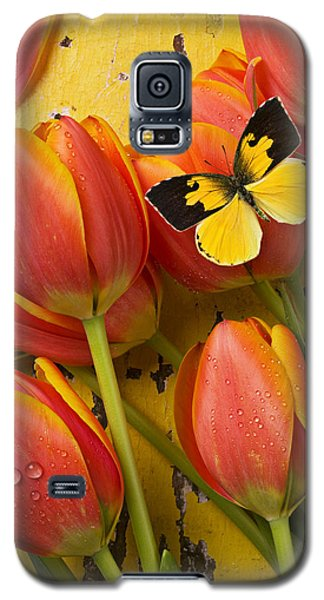 Dogface Butterfly And Tulips Galaxy S5 Case by Garry Gay
