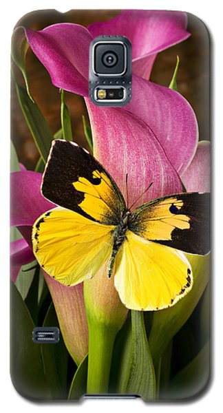 Dogface Butterfly On Pink Calla Lily  Galaxy S5 Case