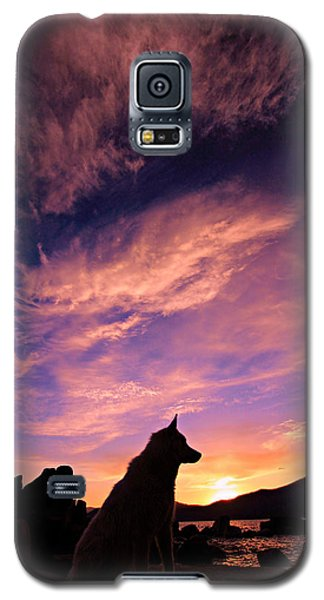 Dogs Dream Too Galaxy S5 Case
