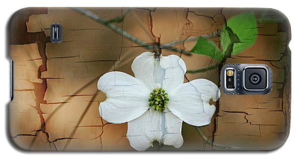 Dogwood Bloom Galaxy S5 Case by Cathy Harper