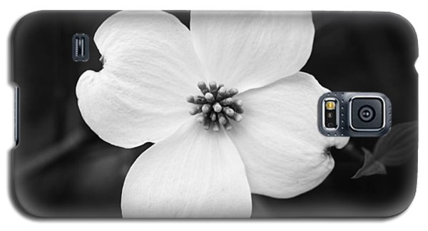 Dogwood Blossom Galaxy S5 Case