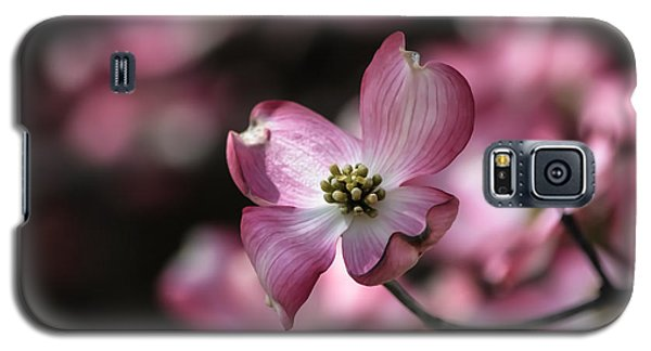 Galaxy S5 Case featuring the photograph Dogwood  by Brenda Bostic