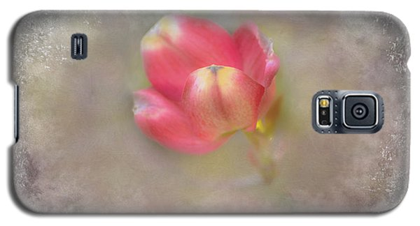 Galaxy S5 Case featuring the photograph Dogwood Bud by Brenda Bostic