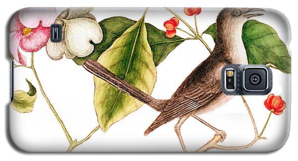 Mockingbird Galaxy S5 Case - Dogwood  Cornus Florida, And Mocking Bird  by Mark Catesby