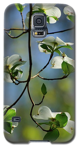 Dogwood In Lake Murray Galaxy S5 Case by Iris Greenwell