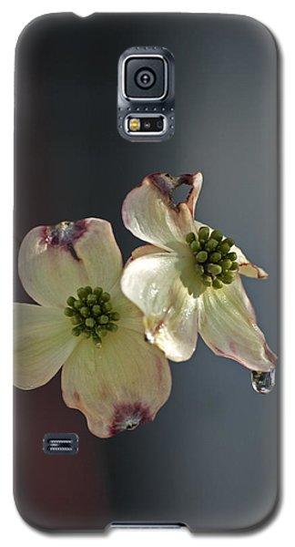 Dogwood Tear Galaxy S5 Case