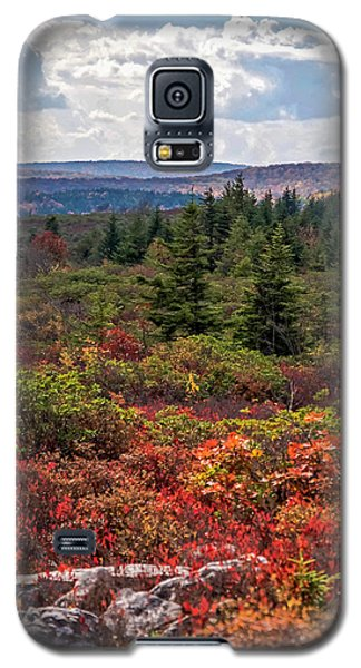 Dolly Sods Wilderness In Autumn 4273 Galaxy S5 Case