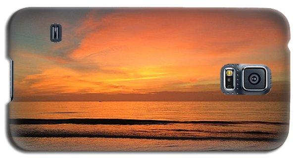 Dolphin Cesar Galaxy S5 Case