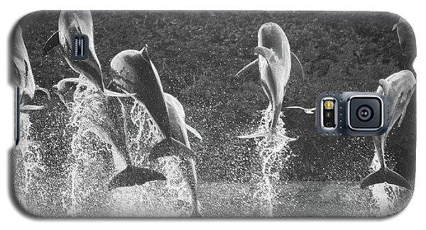 Galaxy S5 Case featuring the photograph Dolphin Dance by Wilko Van de Kamp