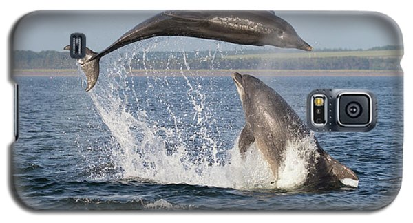 Dolphins Having Fun Galaxy S5 Case